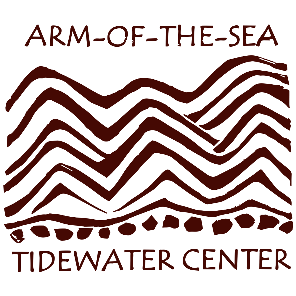 Tidewater Center